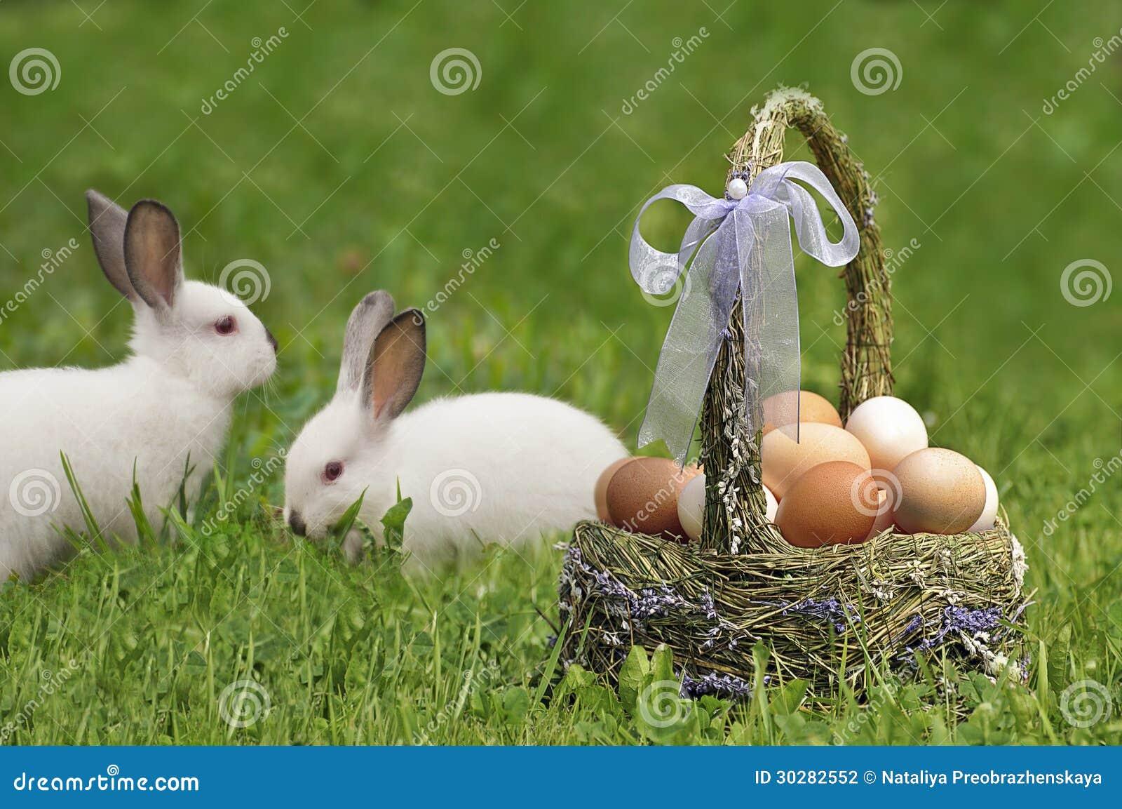 复活节篮子和复活节兔子