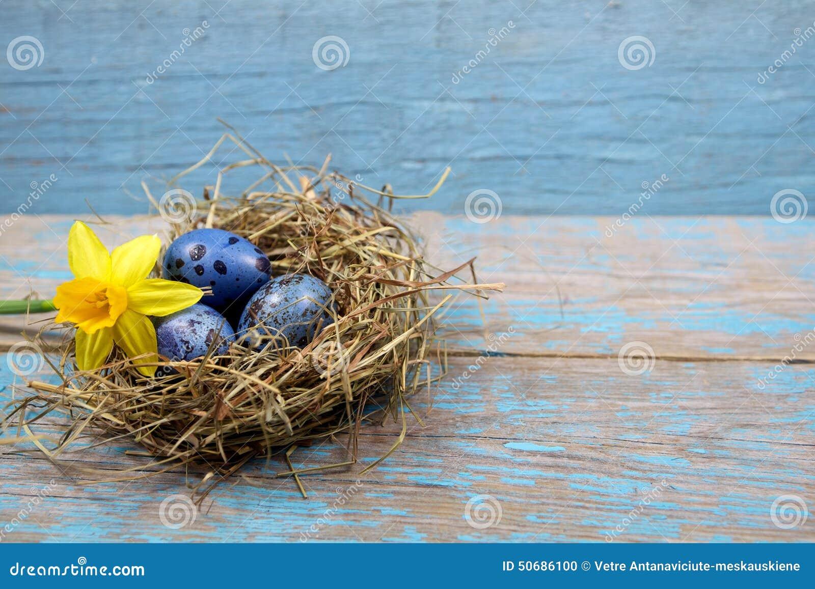 Download 复活节装饰 在巢的鸡蛋在木头 库存照片. 图片 包括有 土气, 自然, 嵌套, 复活节, 食物, 宗教信仰 - 50686100