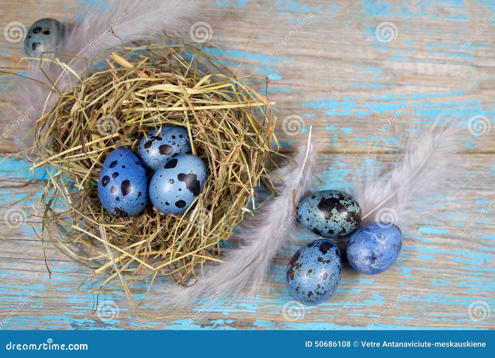 Download 复活节装饰 在巢的鸡蛋在木头 库存照片. 图片 包括有 自然, 复活节, 节假日, 宗教信仰, bataan - 50686108
