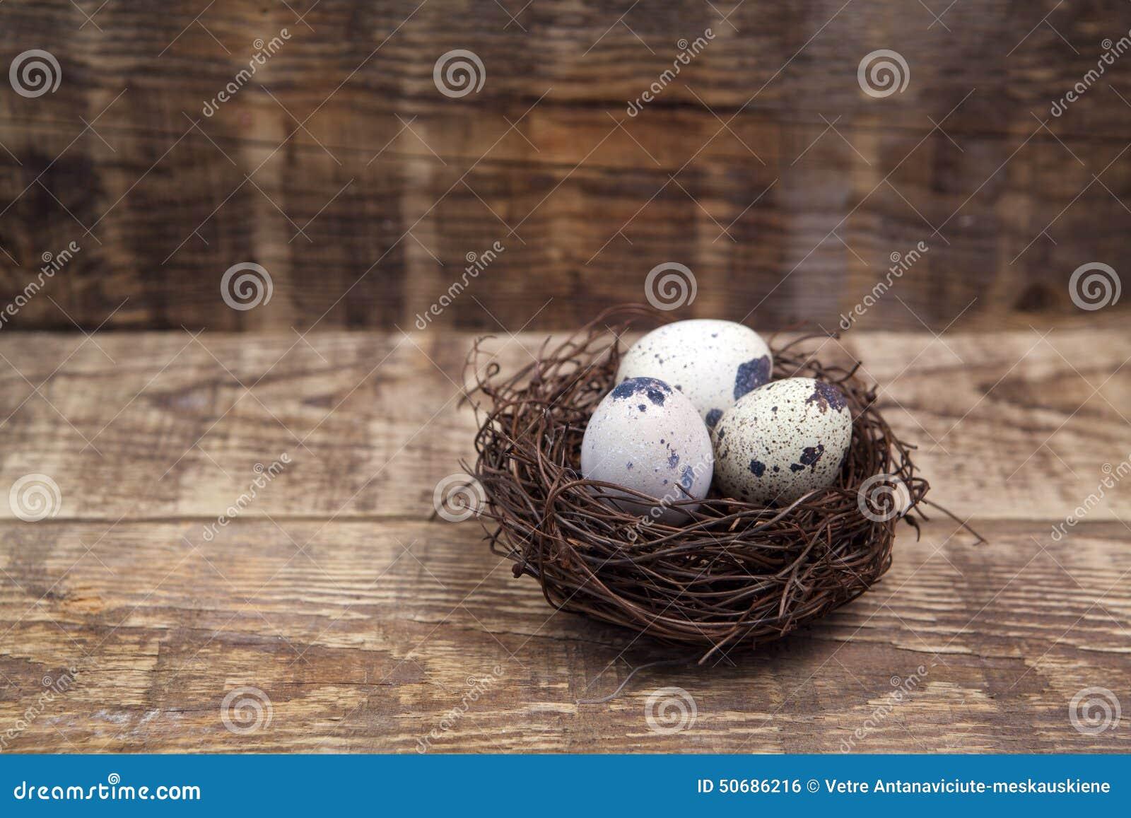Download 复活节装饰 在巢的鸡蛋在木头 库存照片. 图片 包括有 传统, 背包, 鸟舍, 宗教信仰, 土气, 鸡蛋 - 50686216
