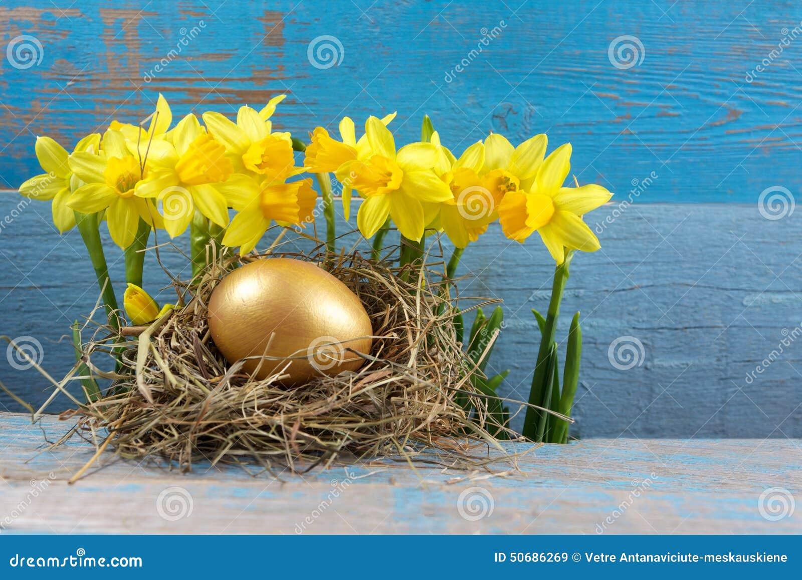 Download 复活节装饰 在巢的鸡蛋在木头 库存图片. 图片 包括有 鸟舍, 木头, 金黄, 宗教信仰, 背包, 自然 - 50686269