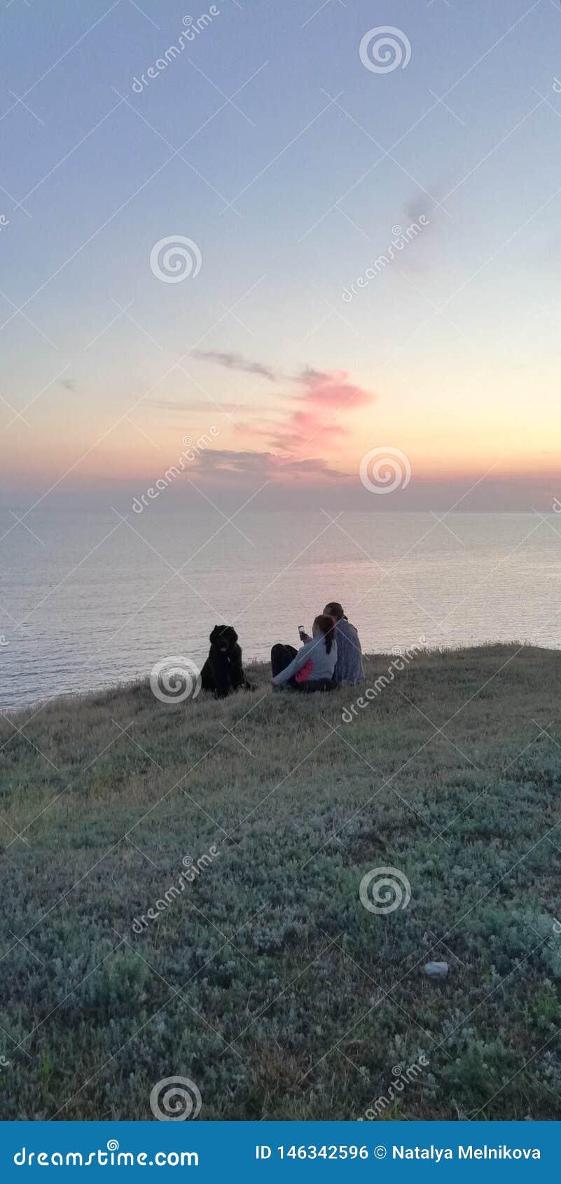 夏天晚上 与一条狗的家庭由海