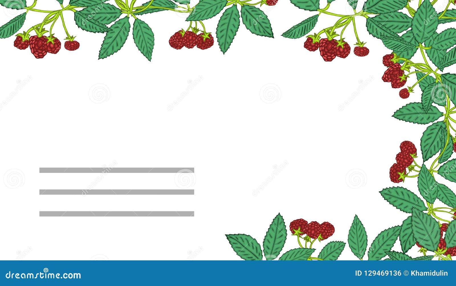 夏天模板用莓果 您的设计的模板,贺卡,欢乐公告