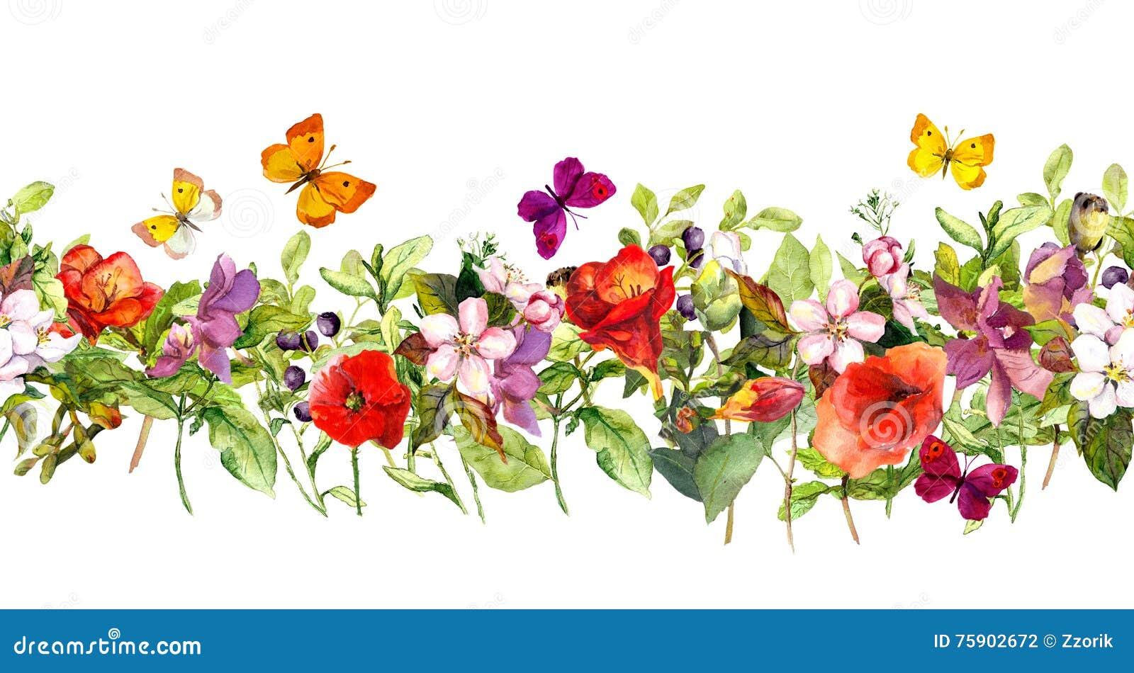 夏天草甸花和蝴蝶 重复框架 水彩