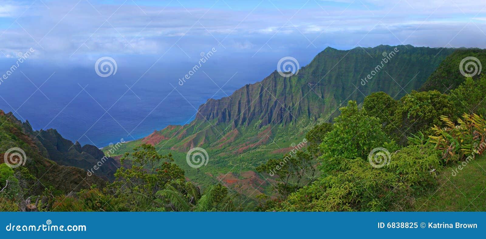 夏威夷考艾岛山