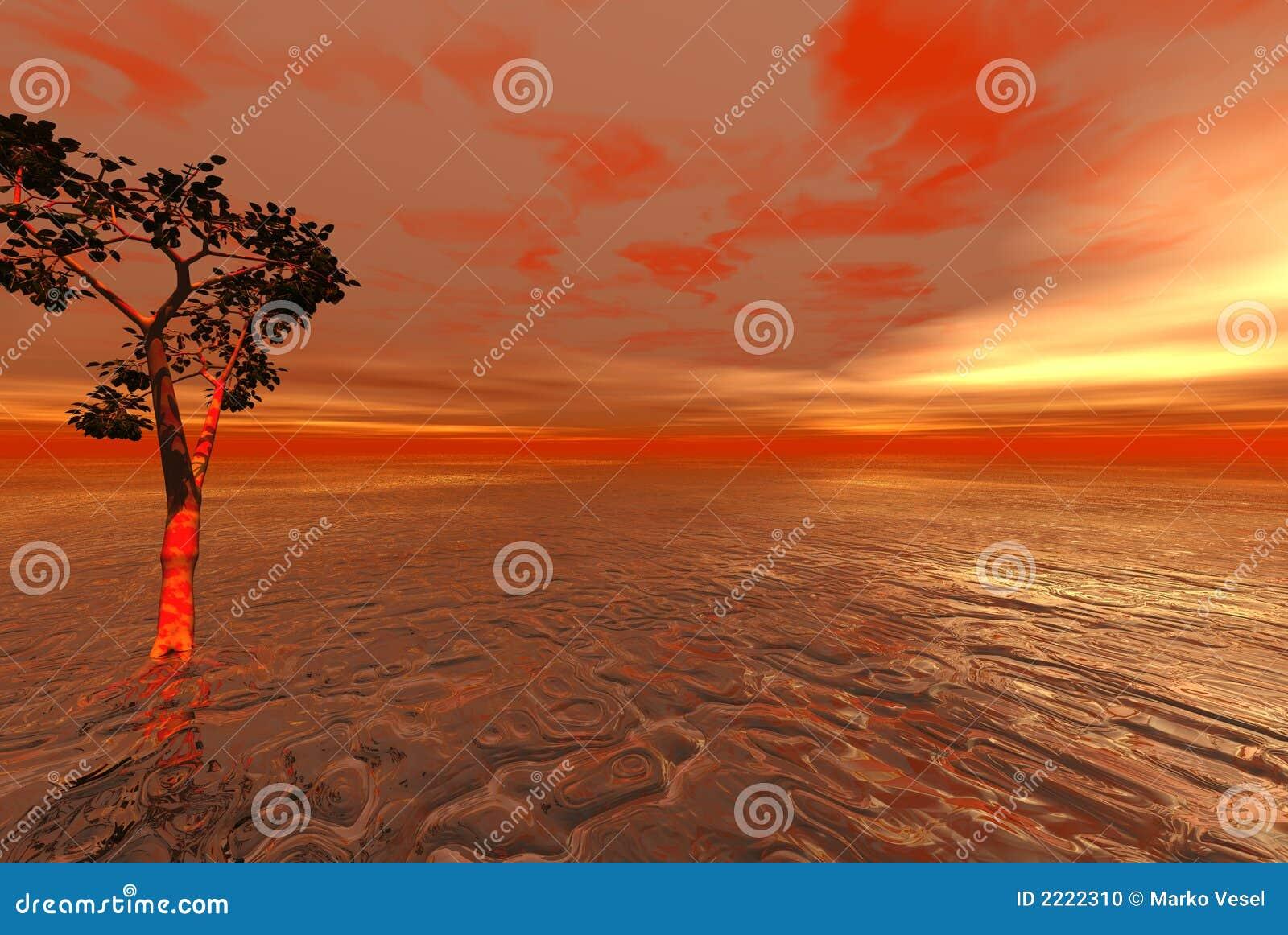 外籍海洋红色孤零零
