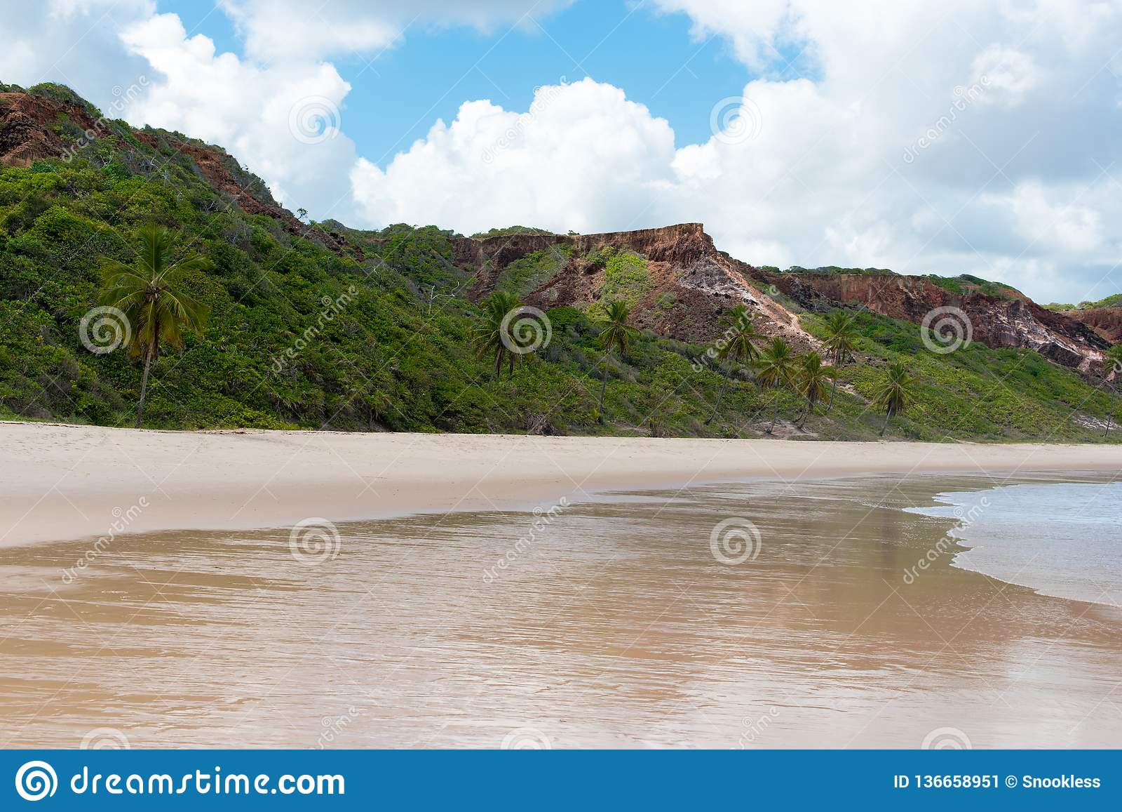 多山巴西海岸线