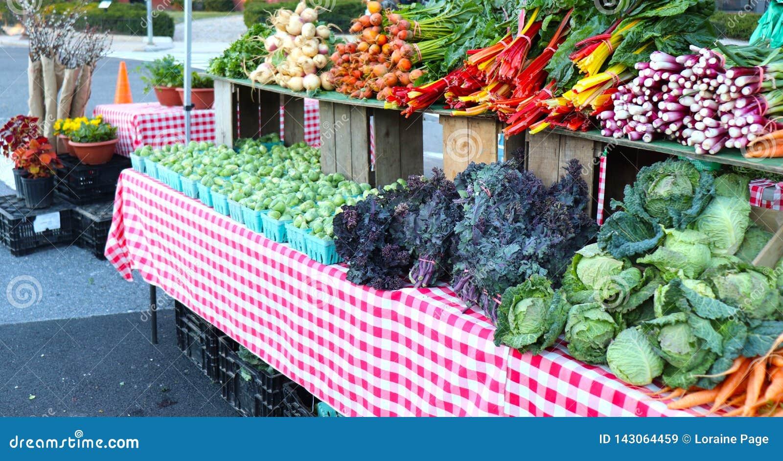多彩多姿的有机蔬菜显示了在农夫的市场上