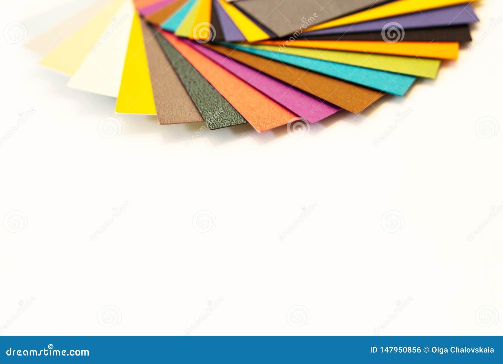 多彩多姿的纸样片调色板 打印的编目纸