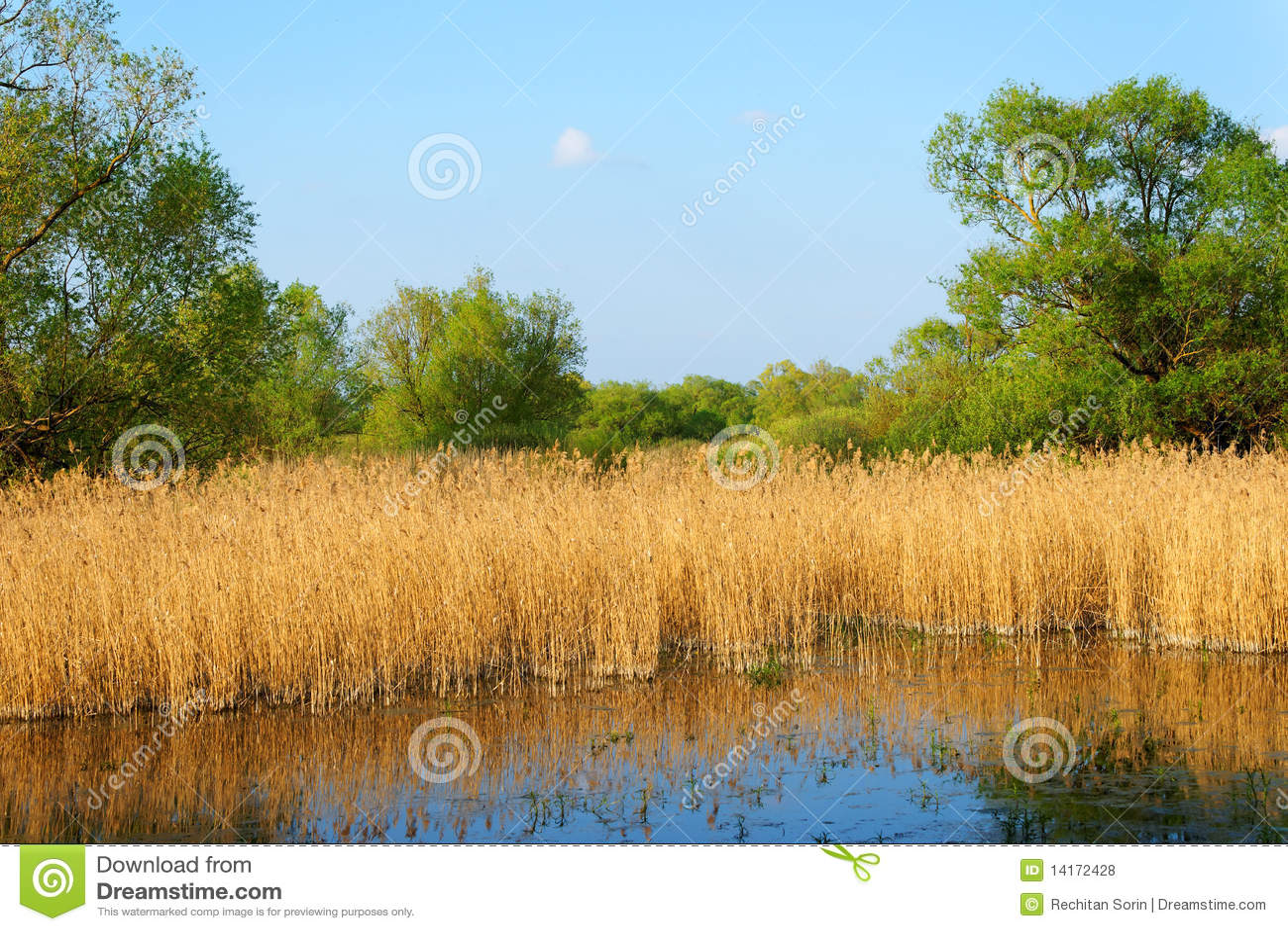 多瑙河Delta