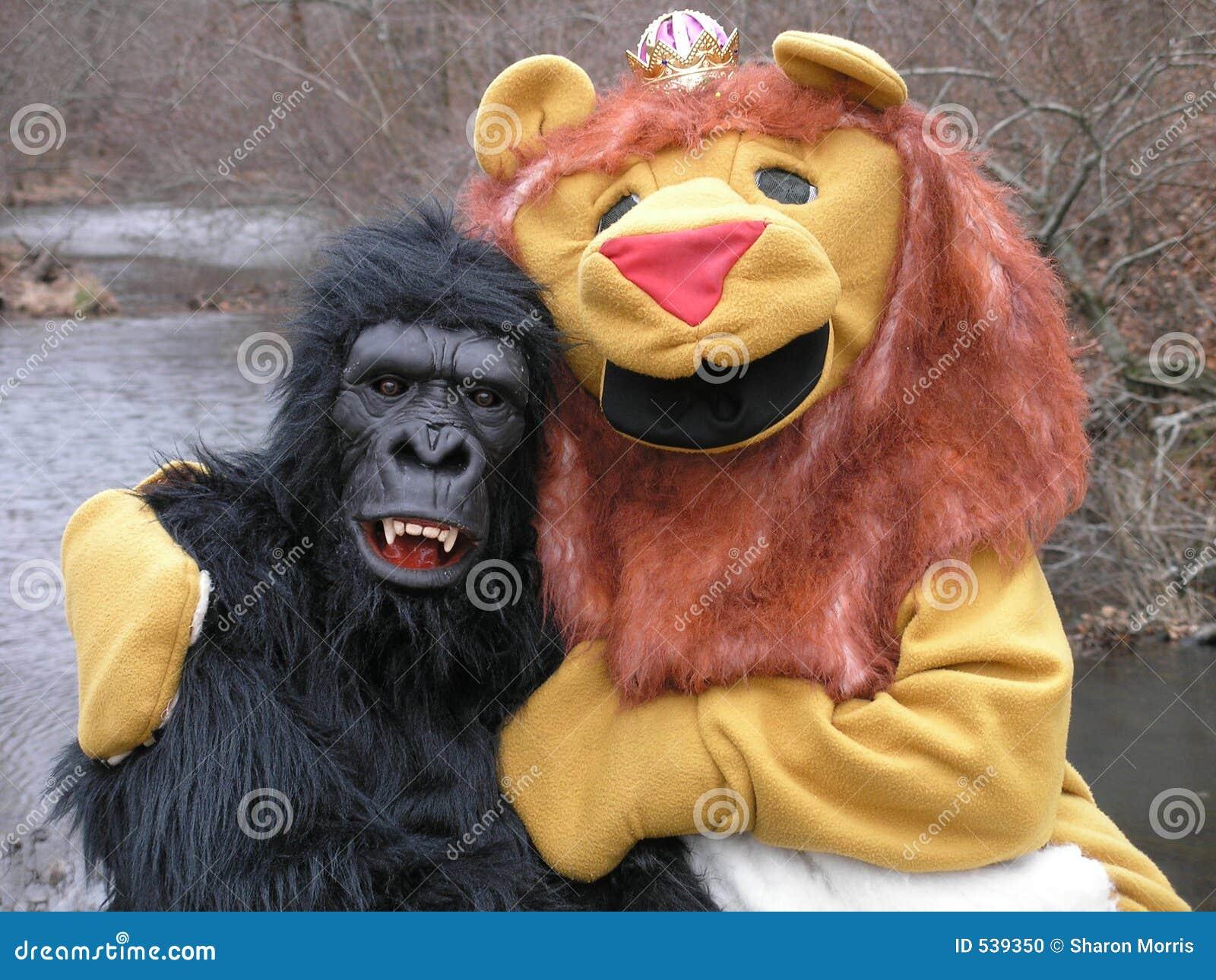 Download 多的夫妇 库存照片. 图片 包括有 服装, 朋友, 滑稽, 人兽交, 室外, 大猩猩, 奇怪, 夫妇, 狮子 - 539350