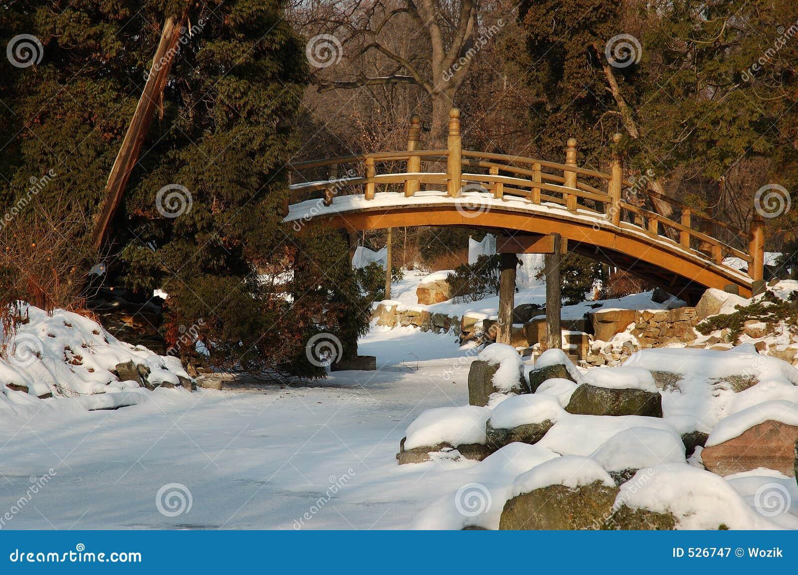 Download 多雪的庭院 库存图片. 图片 包括有 岩石, 贿赂, 庭院, 天空, 包括, 冬天, 波兰, 日语, 晒裂, 结构树 - 526747