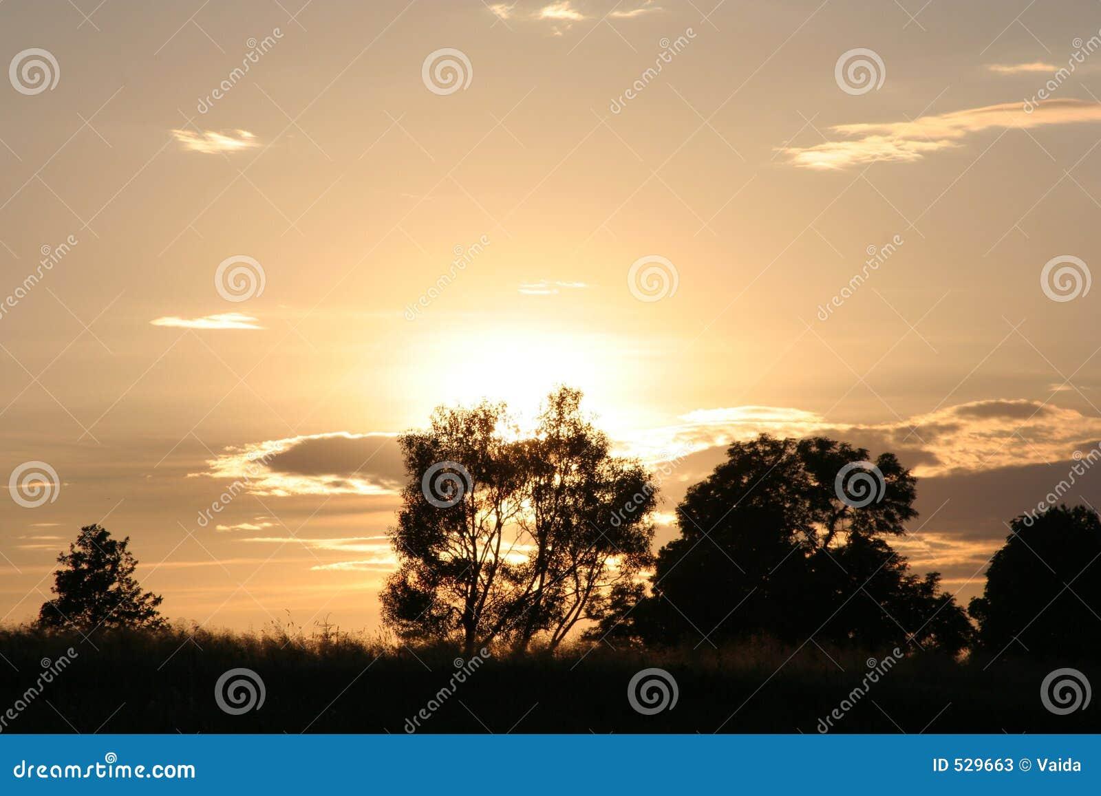 Download 夜间天空 库存图片. 图片 包括有 亮光, 日落, 夜间, 背包, 晒裂, 本质, 云彩, 发光, 结构树, 天空 - 529663