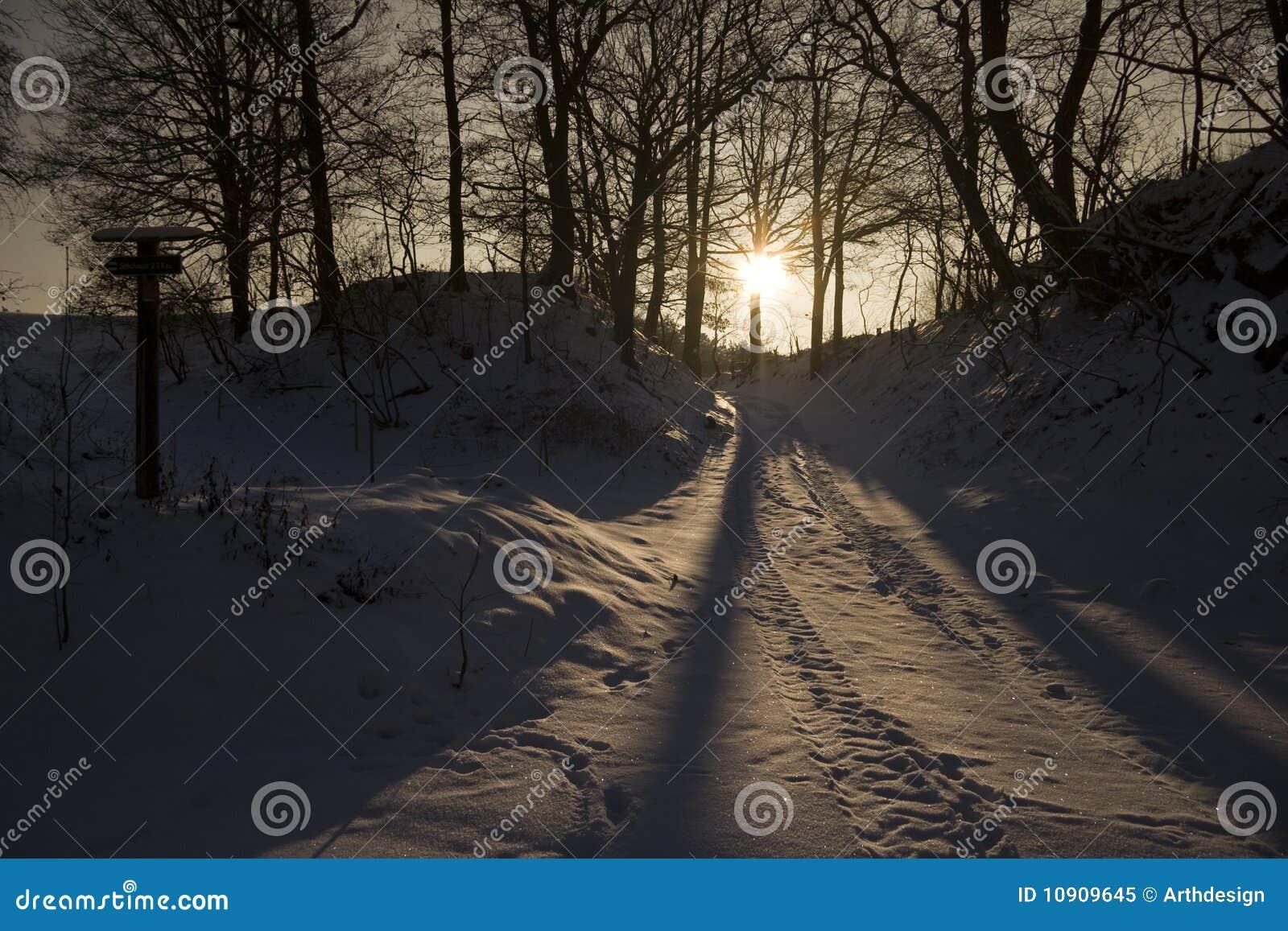 夜间横向冬天