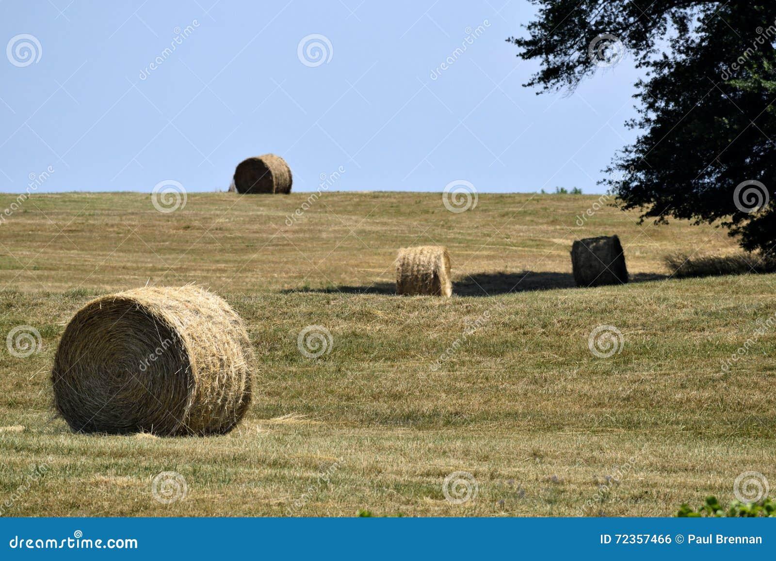大包在亩茬地的秸杆