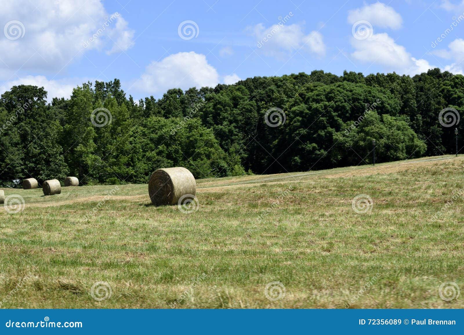大包干草在农村乔治亚