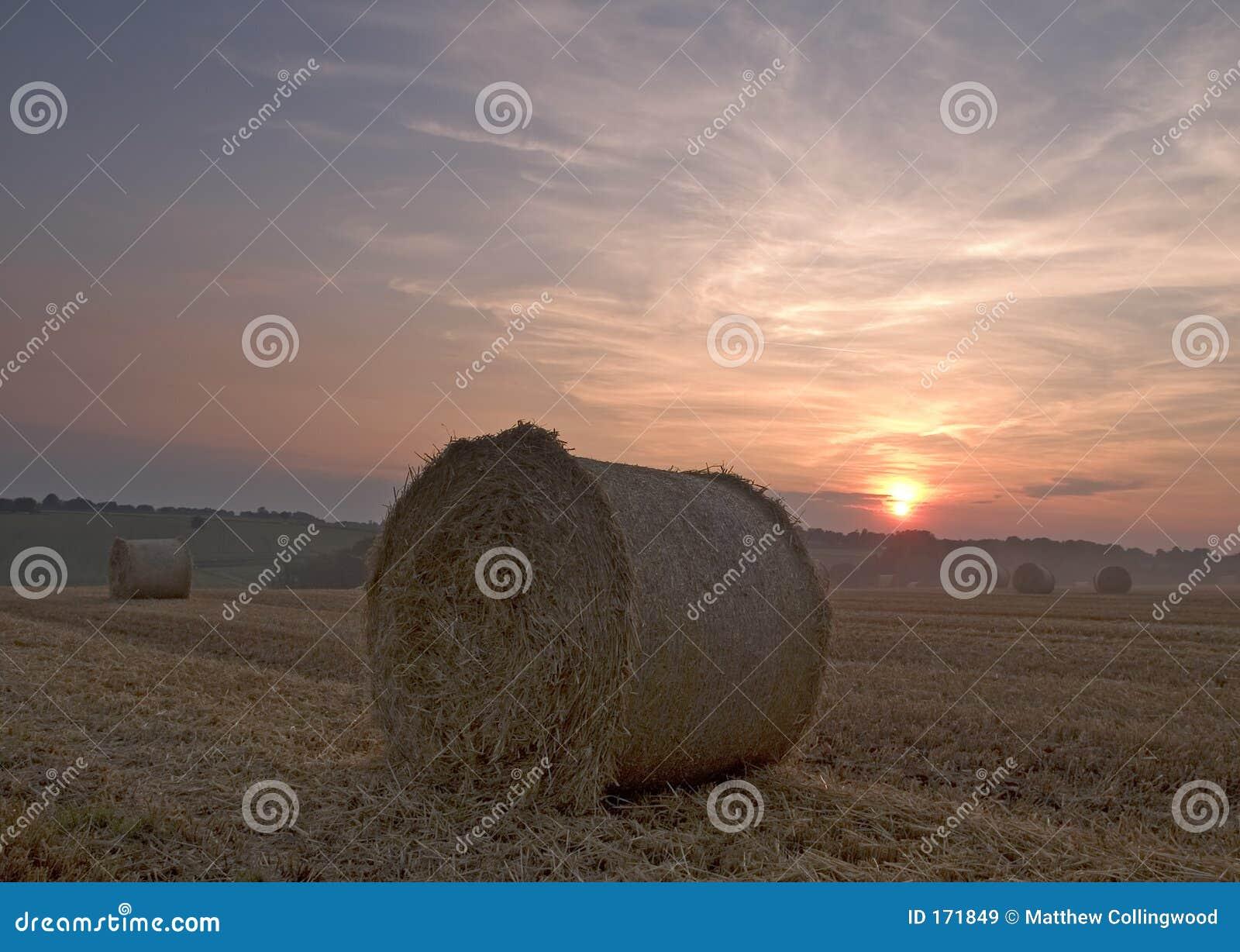 大包干草日落