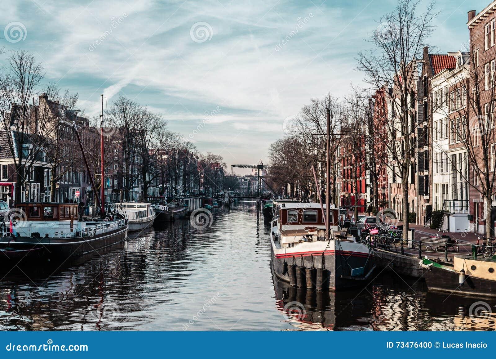 大厦和街道在阿姆斯特丹,荷兰