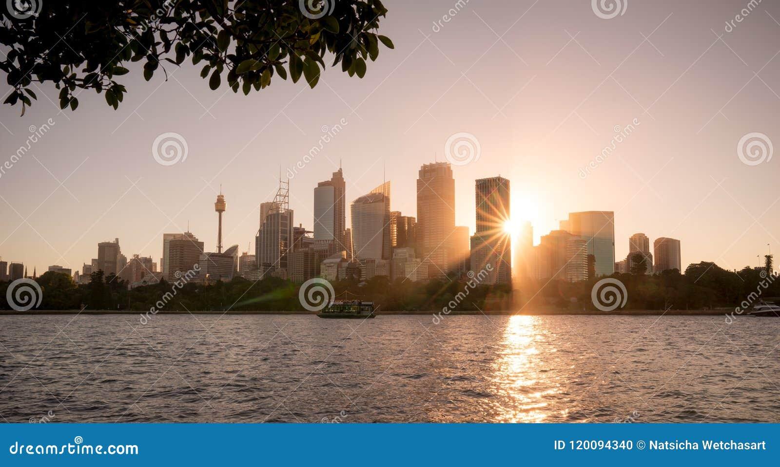 大厦看法在悉尼市,在日落时间在夏天ho