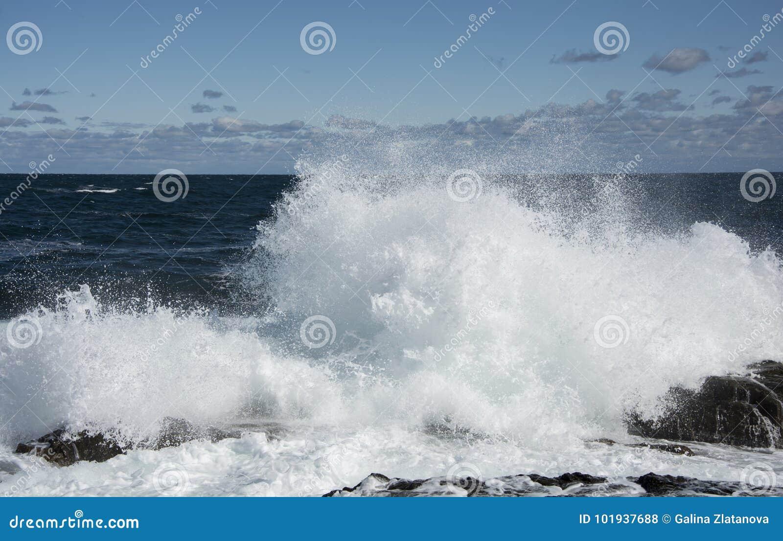大和强的波浪在黑海