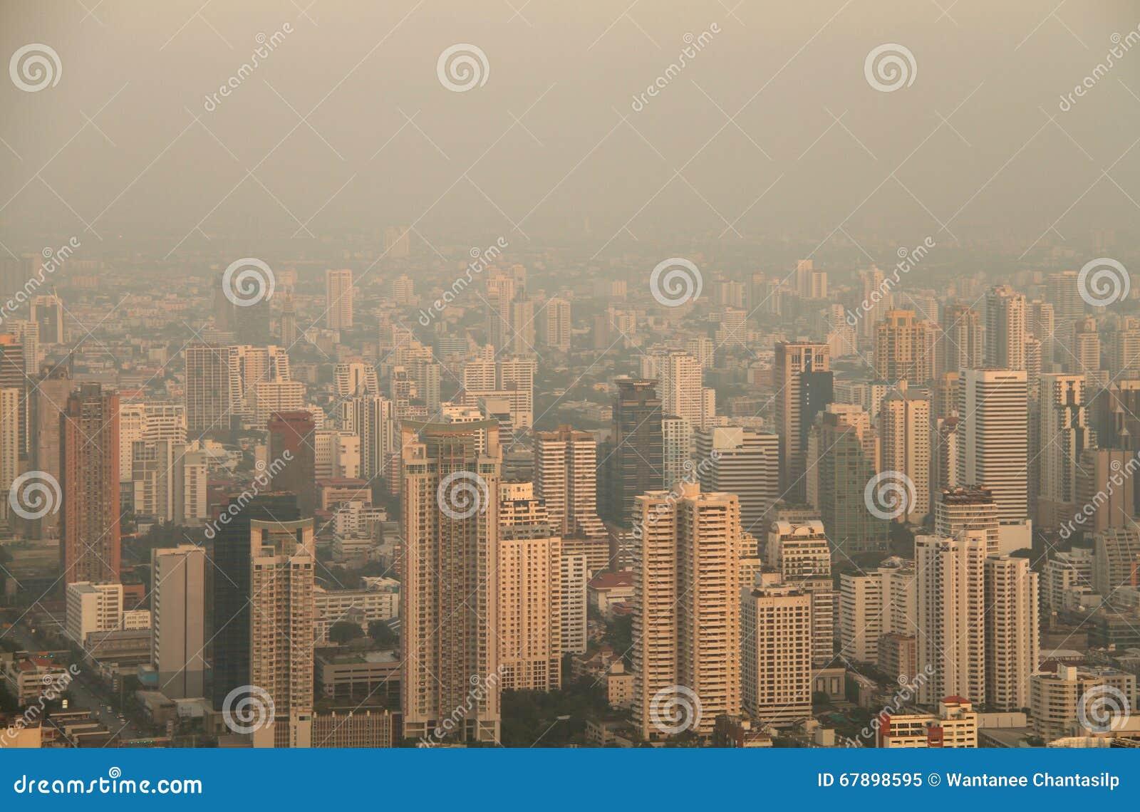 大城市鸟瞰图在有薄雾的早晨
