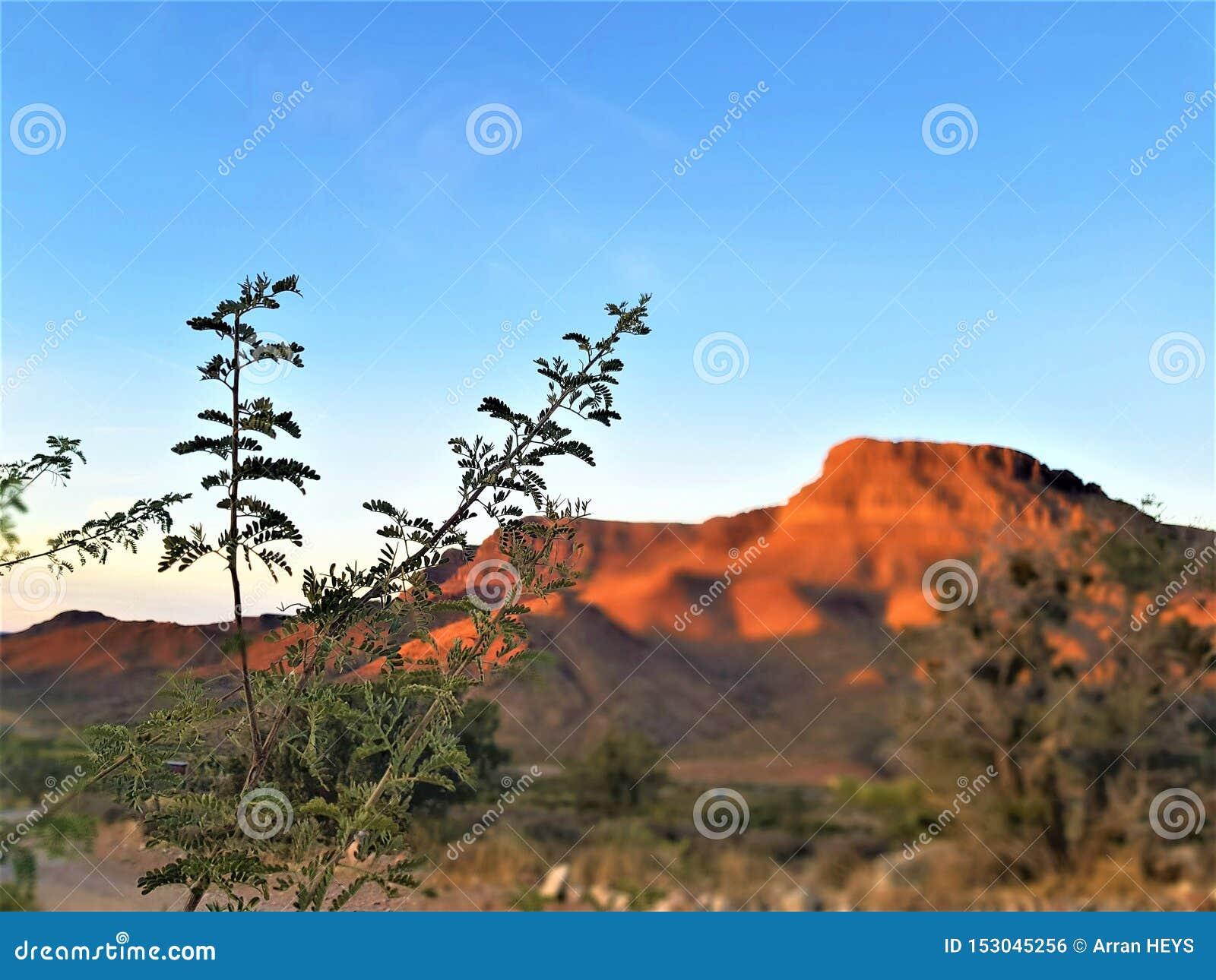 大峡谷,亚利桑那美国红色岩石