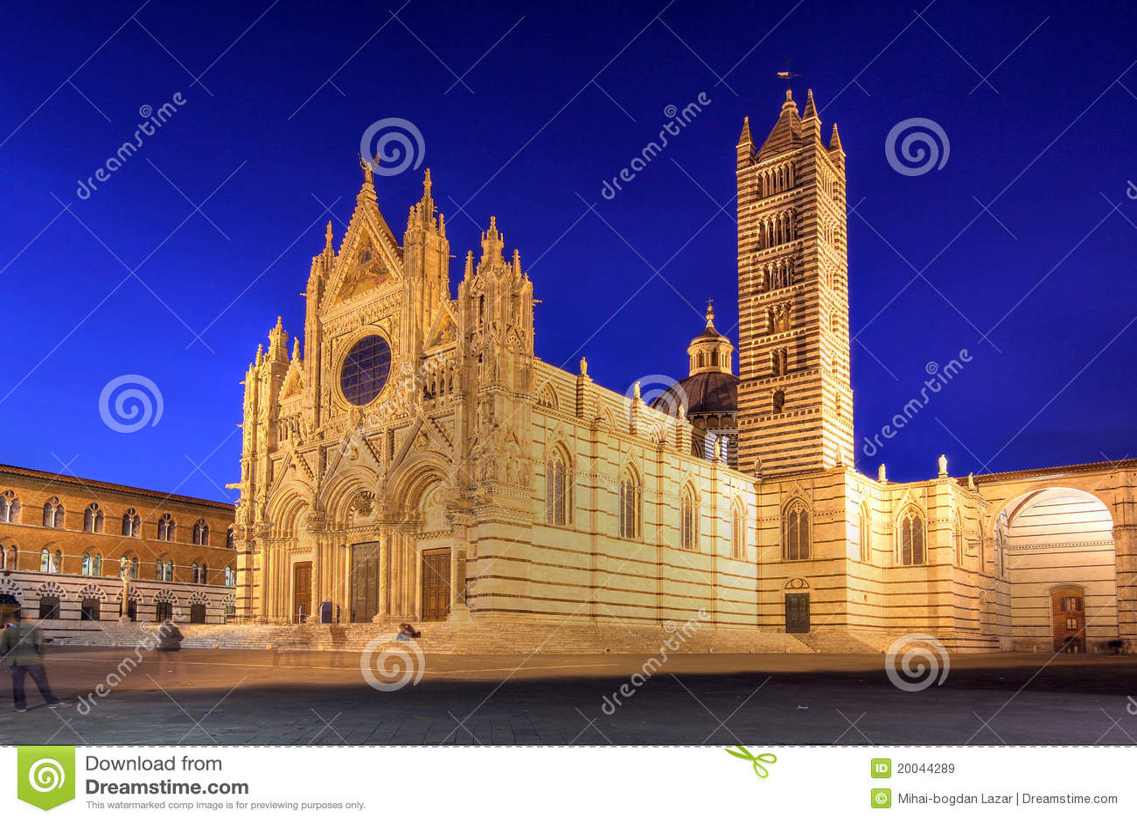 大教堂意大利siena