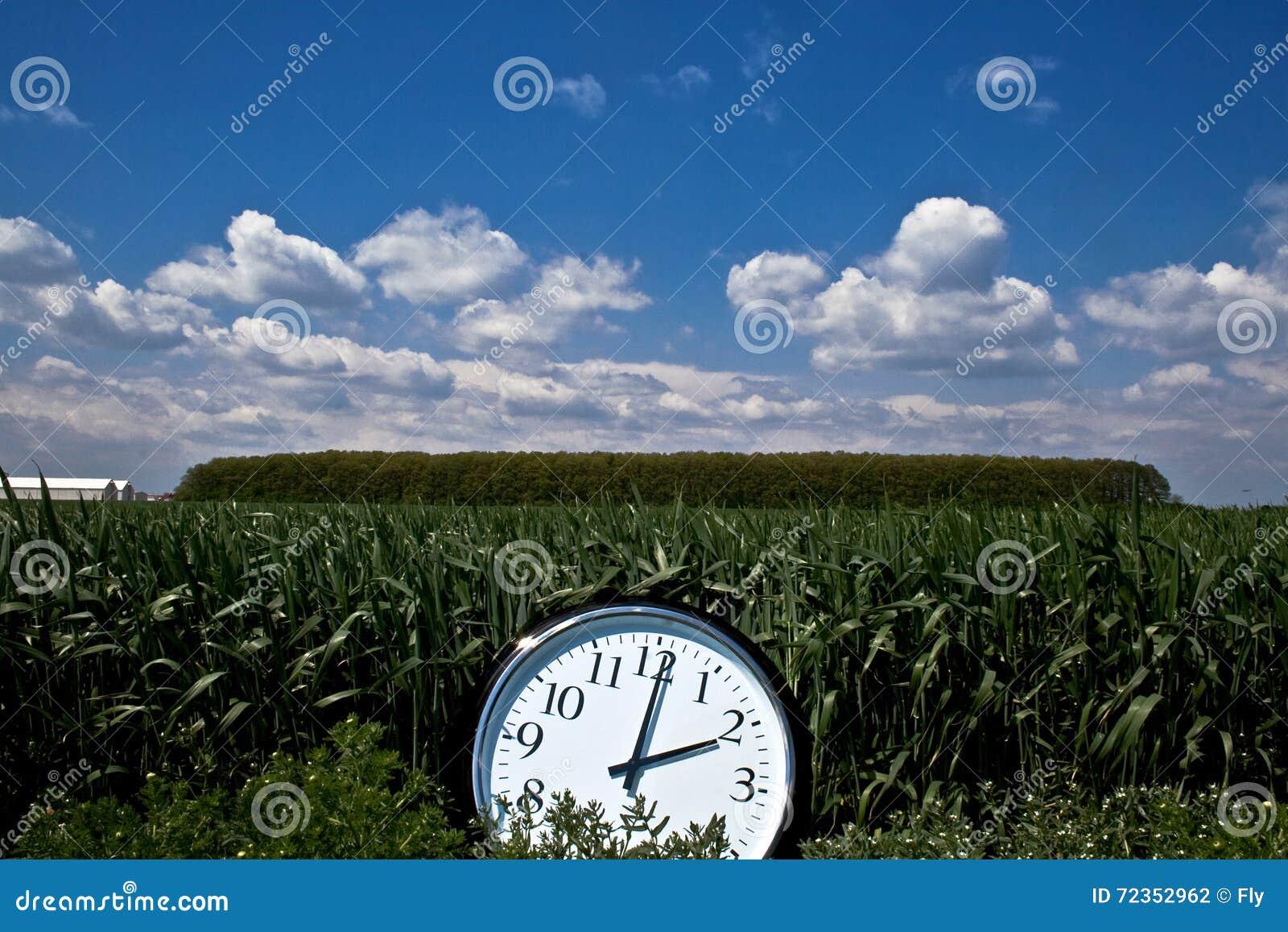 大时钟在一个绿色领域的中午