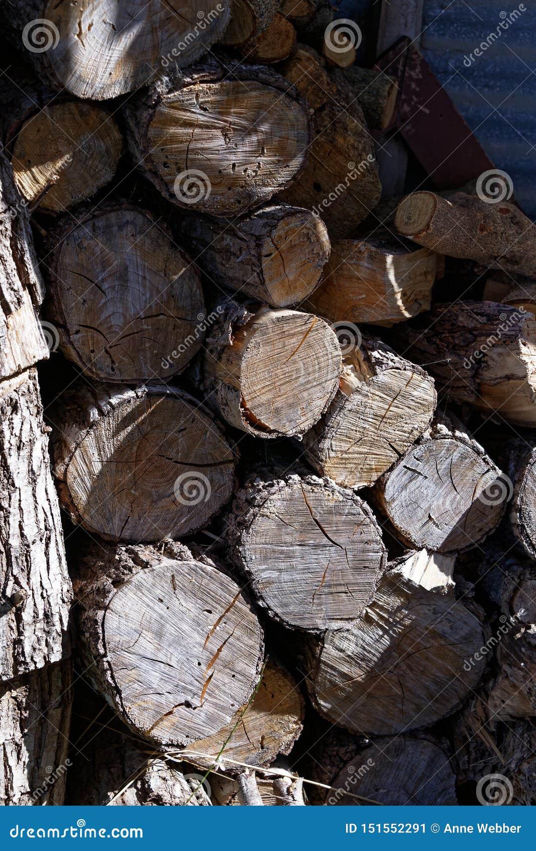 大火的木柴