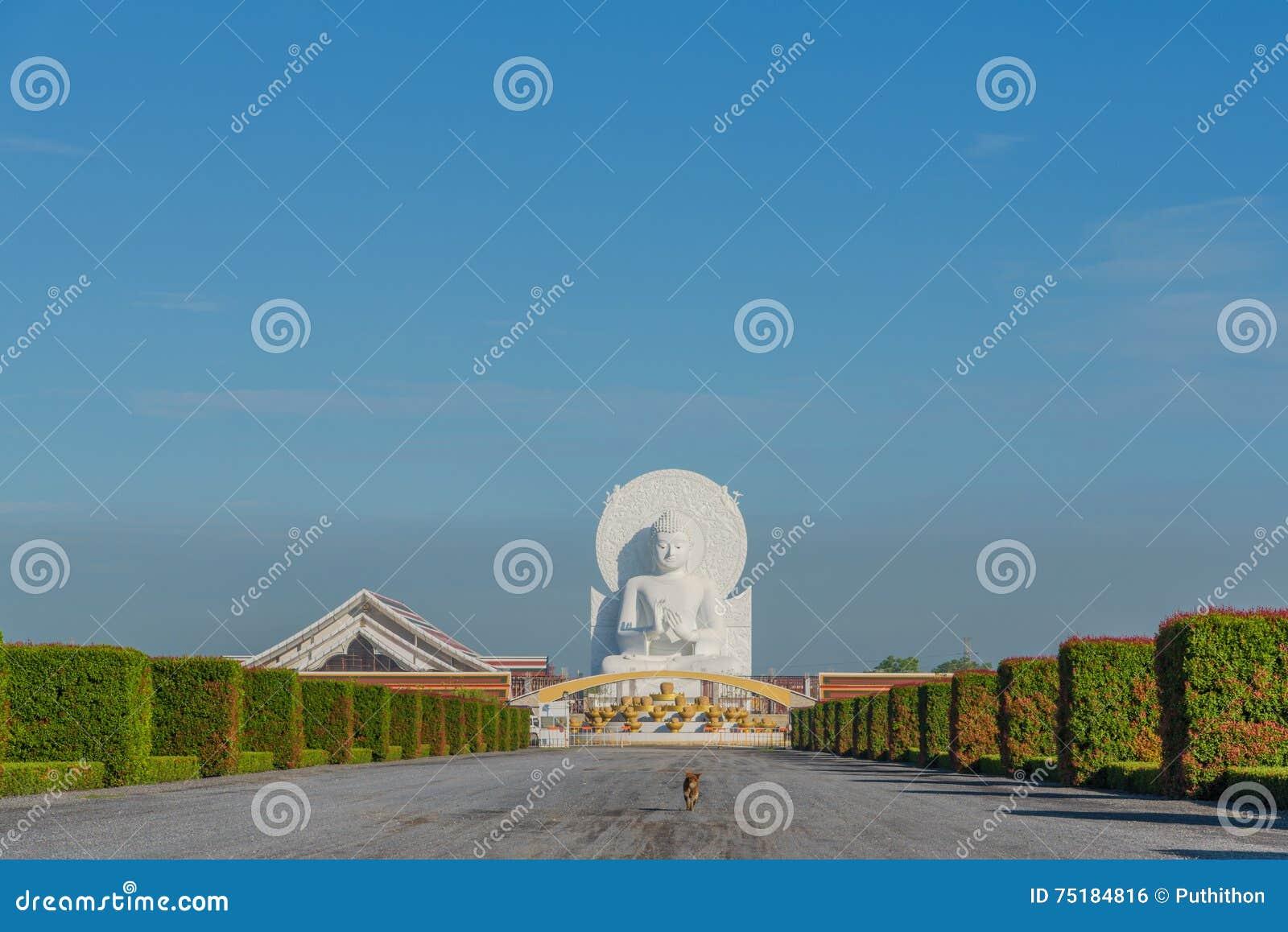 大白色菩萨图象在Saraburi,泰国