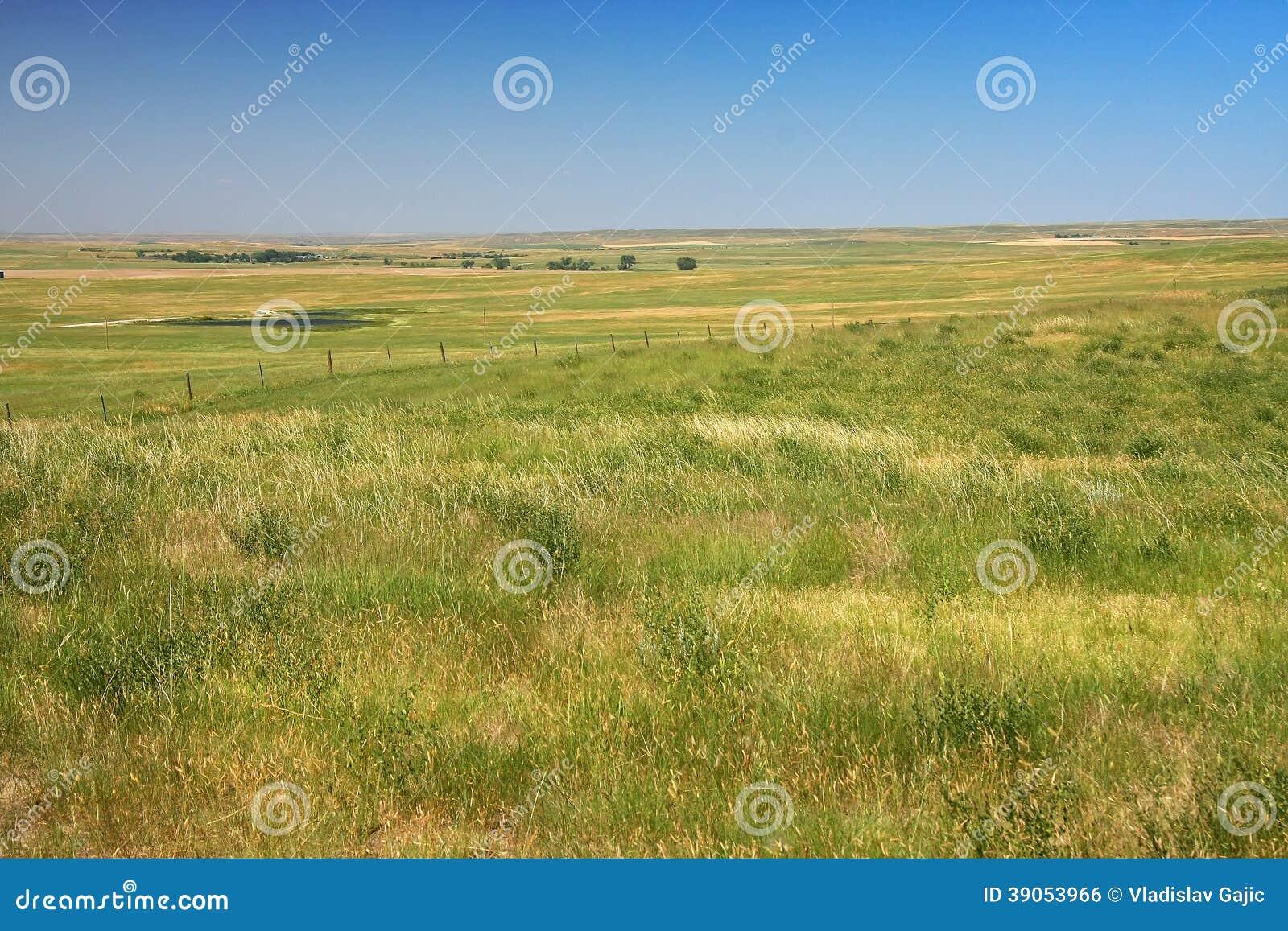 大草原在达可它