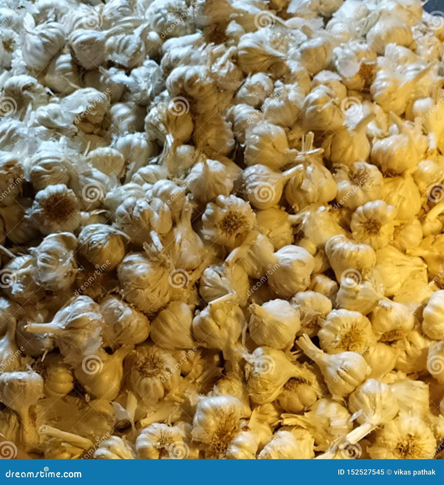 大蒜菜和印度空间待售在市场上