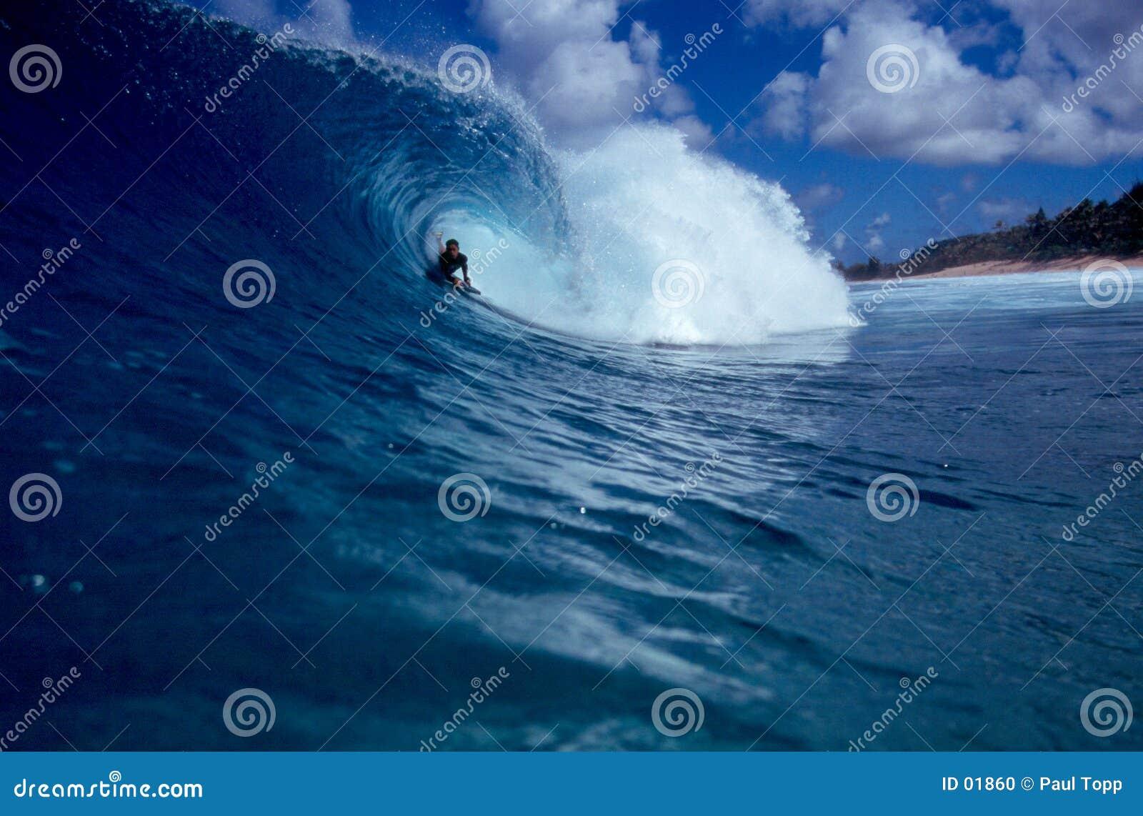 大蓝色bodyboarder冲浪的管通知