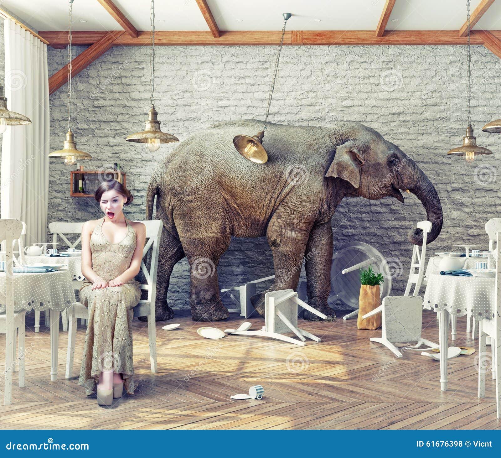 大象安静在餐馆