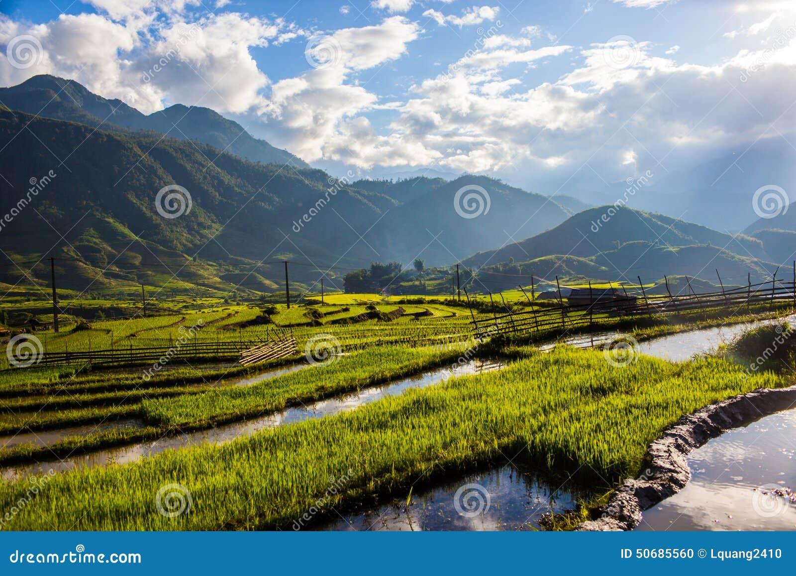 Download 大阳台在Sapa越南 库存照片. 图片 包括有 山坡, 贫穷, 农场, 冷静, beautifuler, 农村 - 50685560