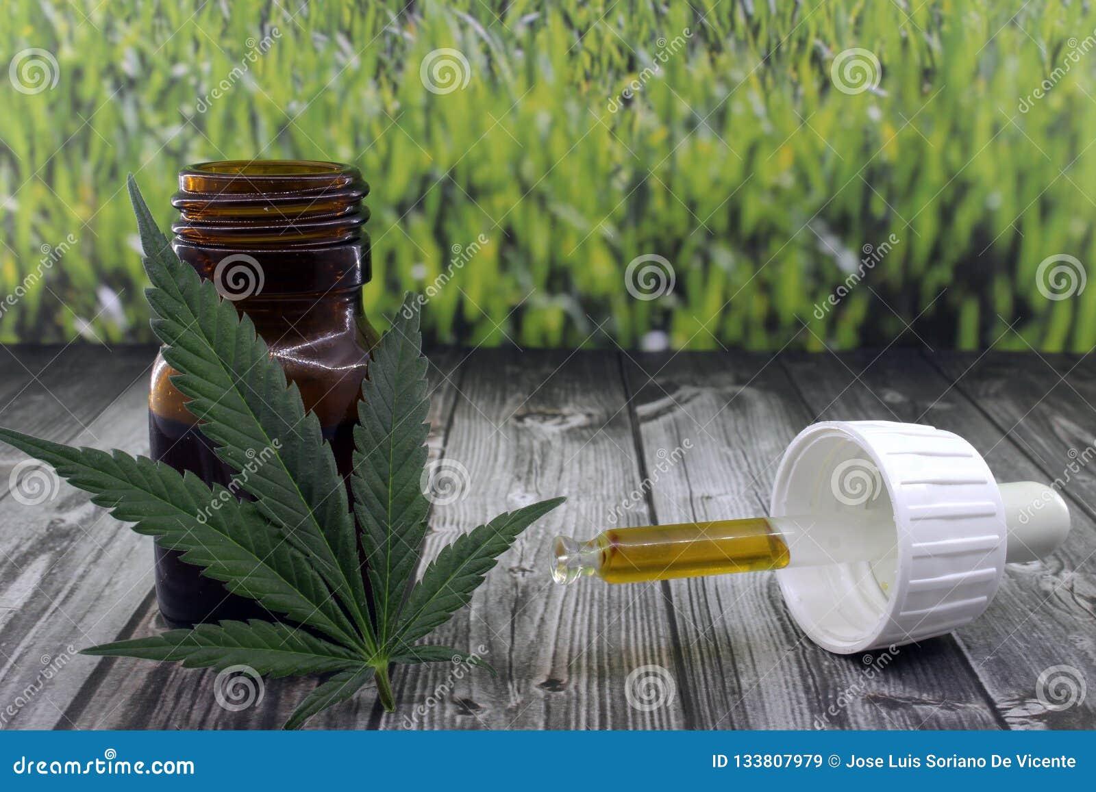 大麻安慰痛苦的油萃取物