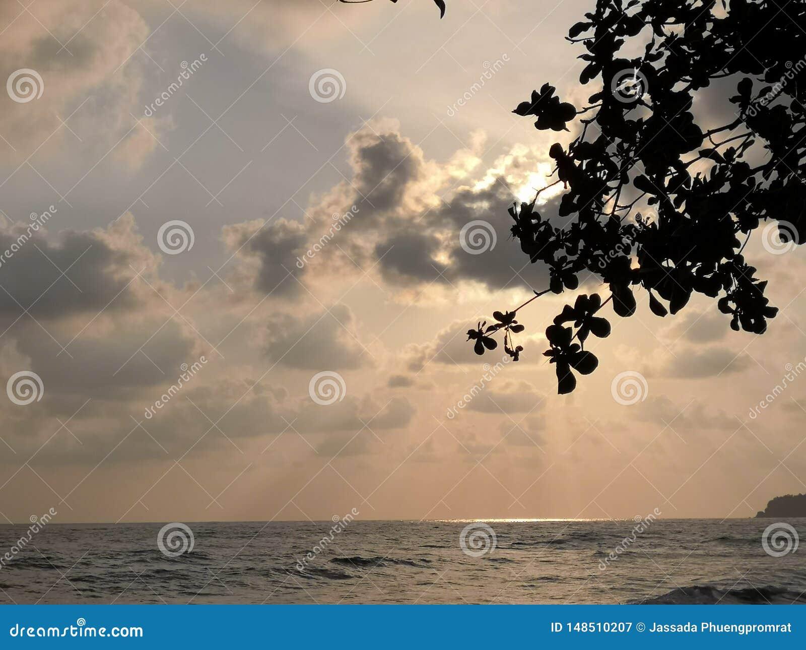 天空和海酸值的张泰国
