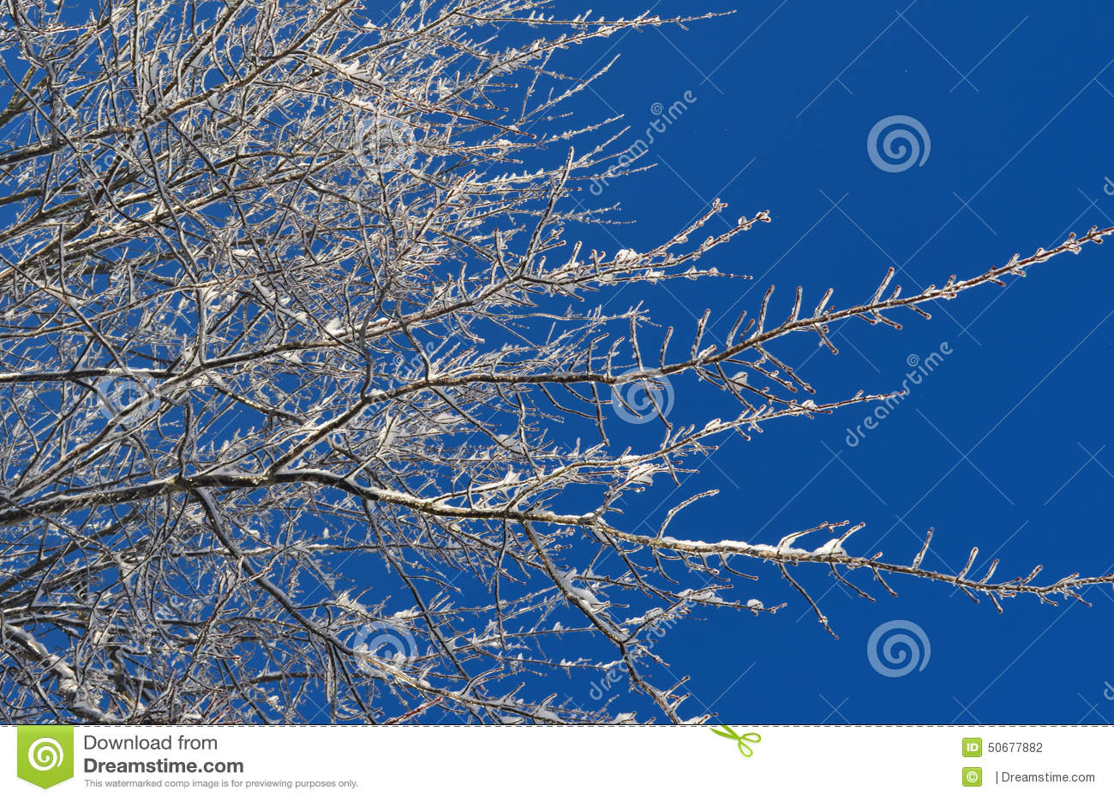 Download 冻结天空 库存照片. 图片 包括有 阿拉斯加, 被日光照射了, 冬天, brander, 航空, 蓝色, 白兰地酒 - 50677882
