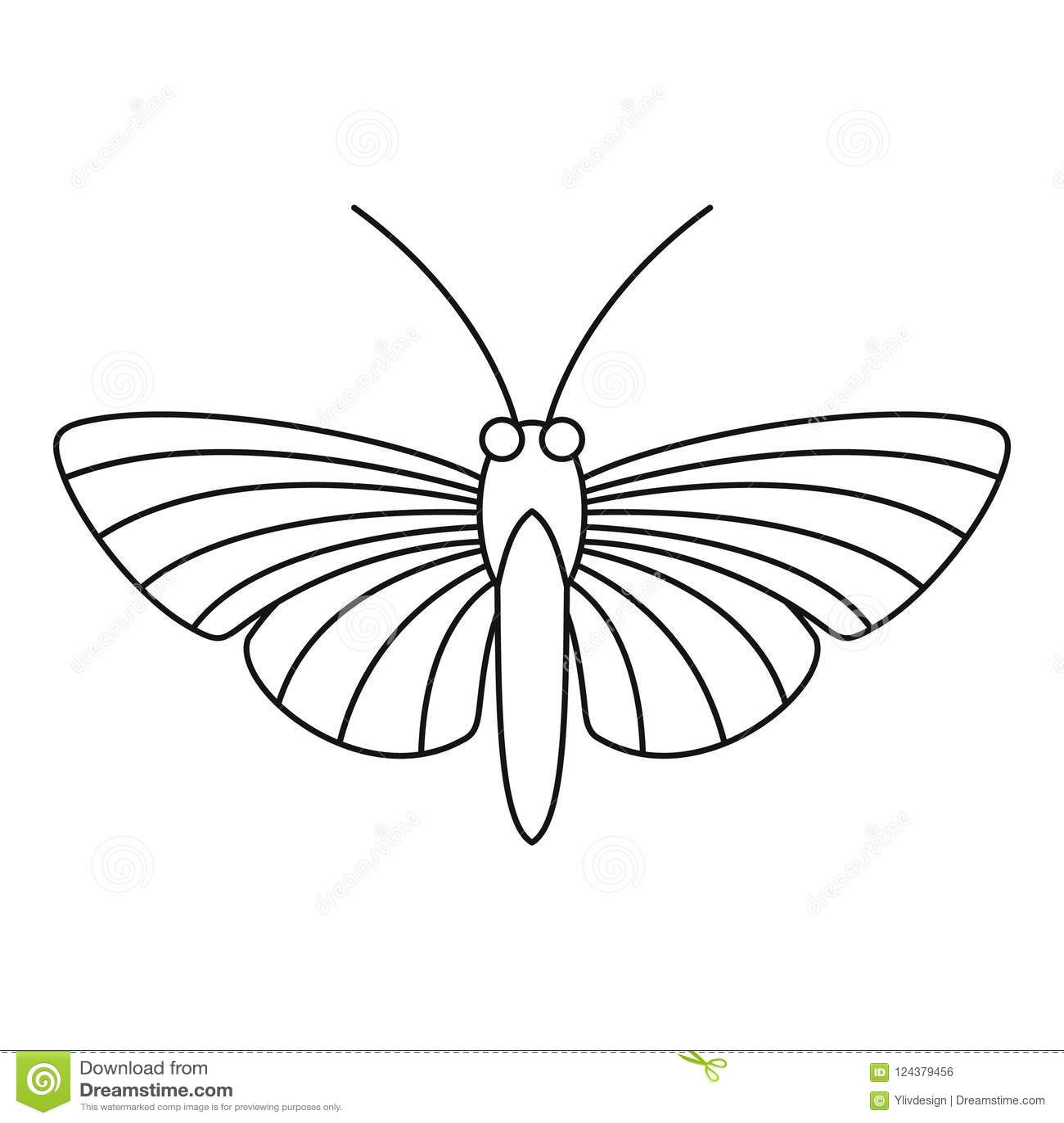 天蛾蝴蝶象,概述样式