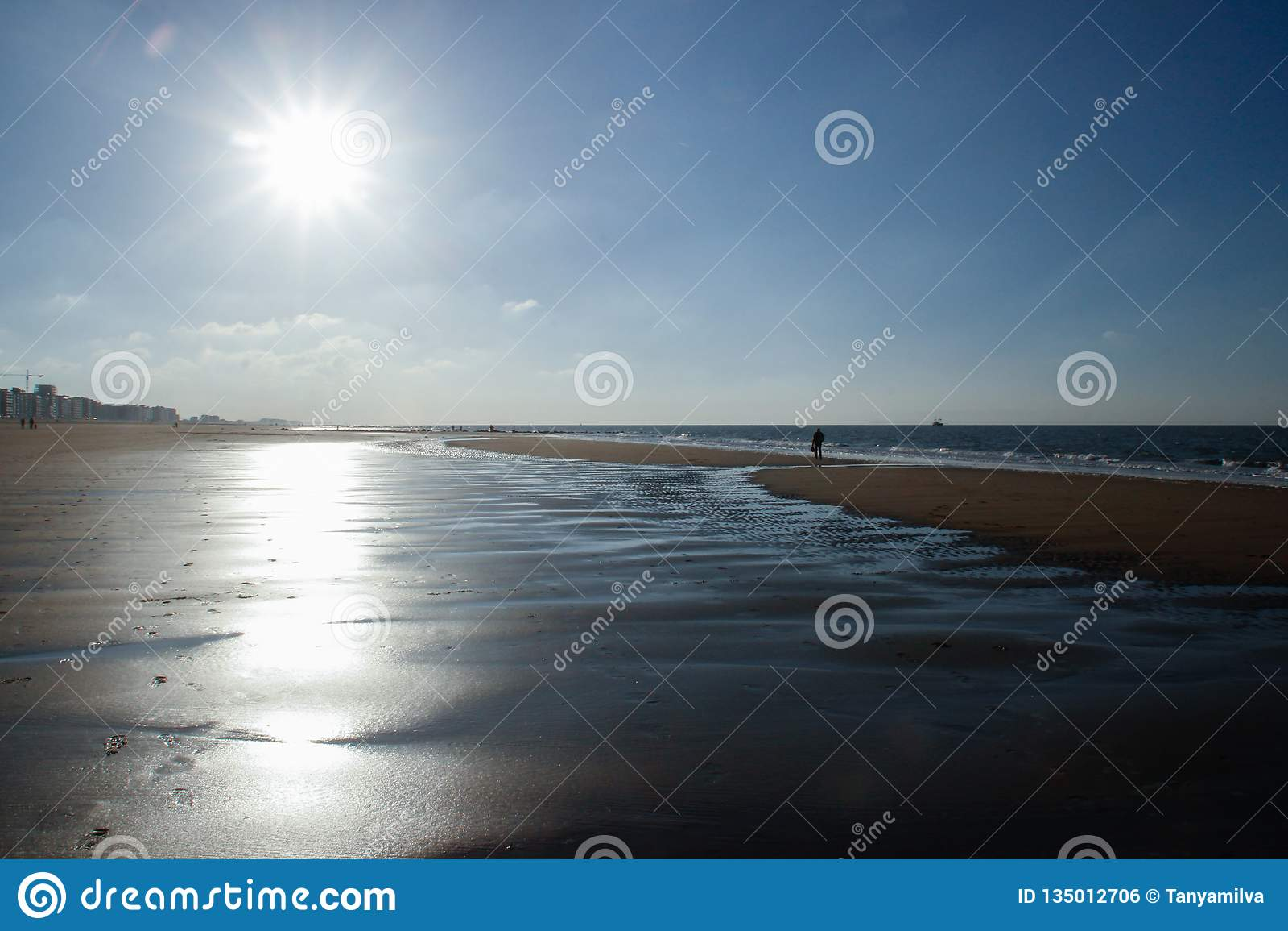 太阳在比利时照亮离开的海滩冷的北海