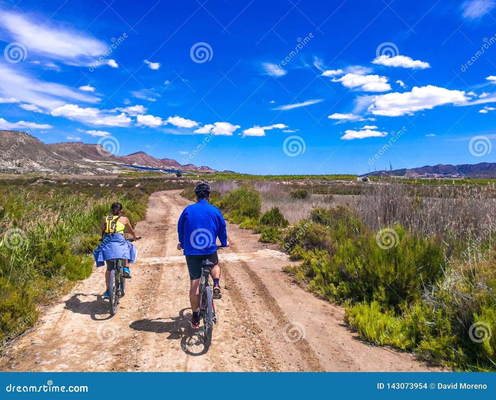 夫妇乘坐的自行车看法在一条土路的在美丽的parkland