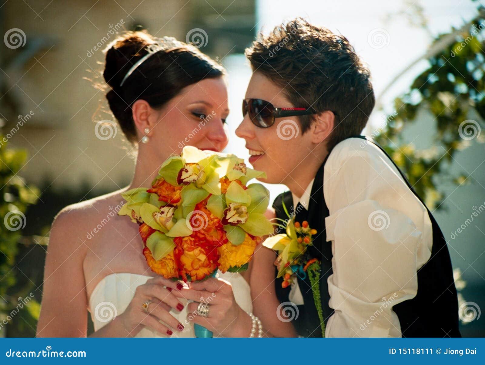 夫妇女同性恋的婚姻游行彩虹多伦多