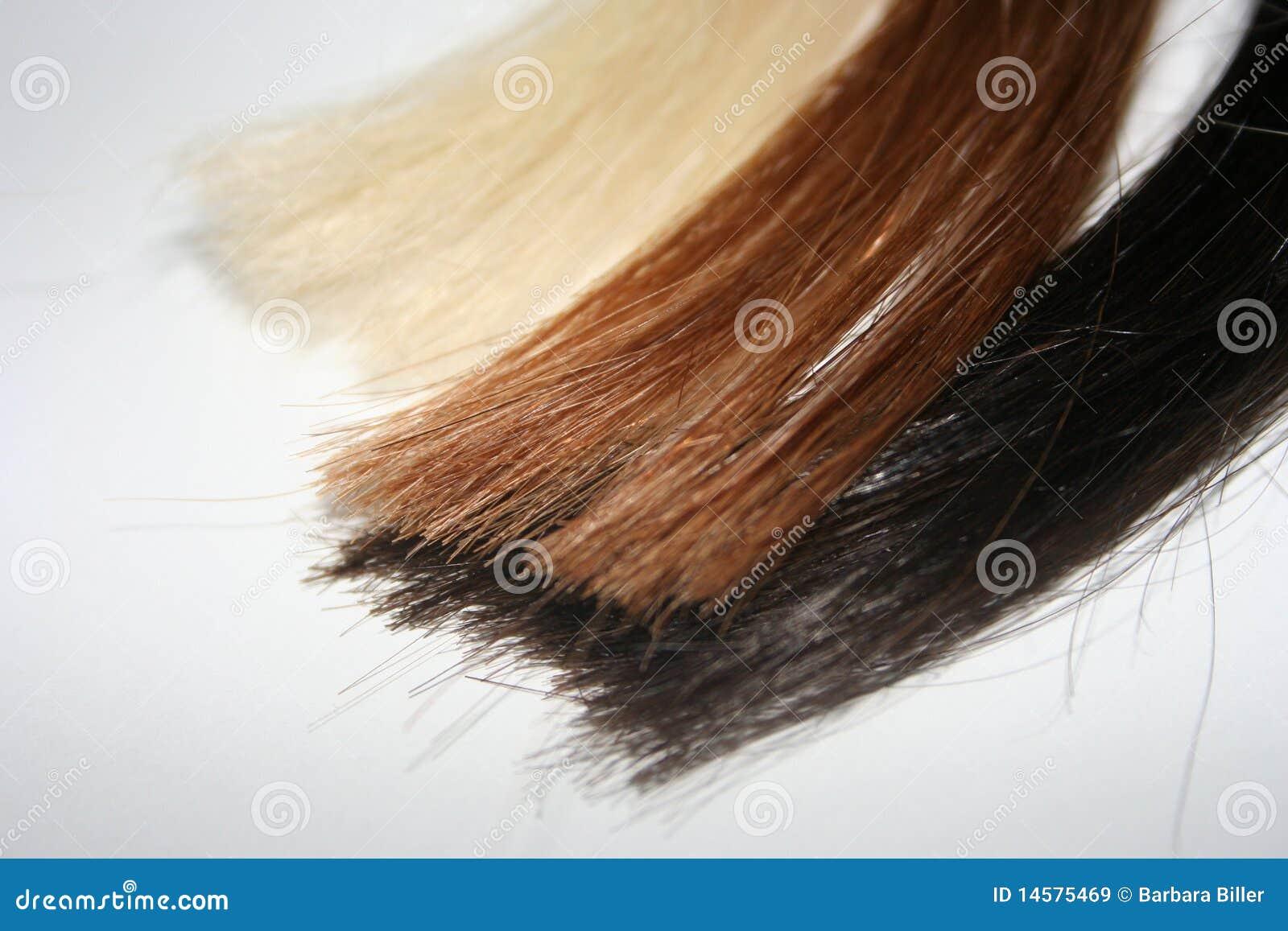头发色的子线