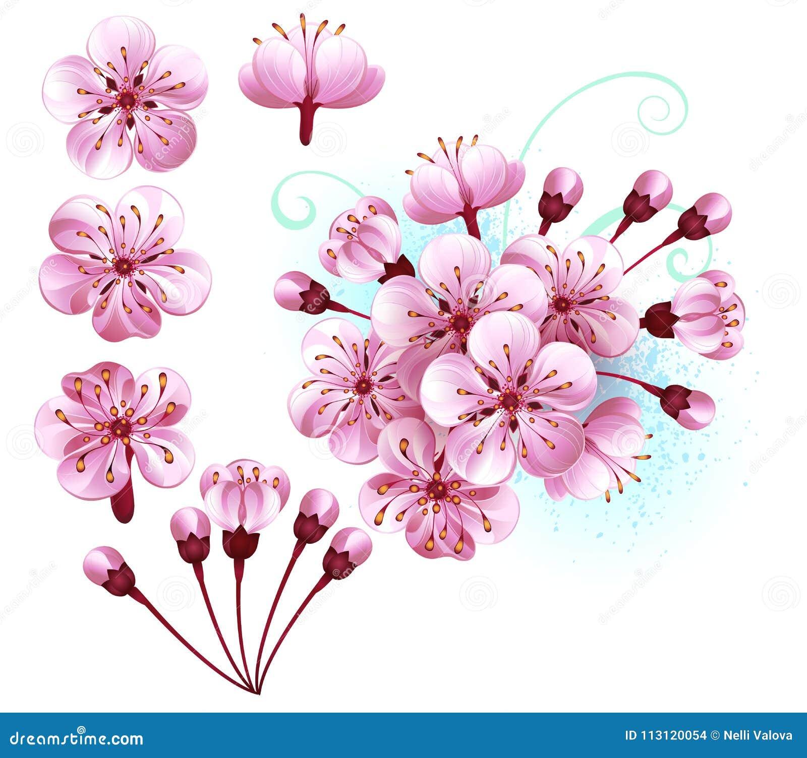 套佐仓开花桃红色花