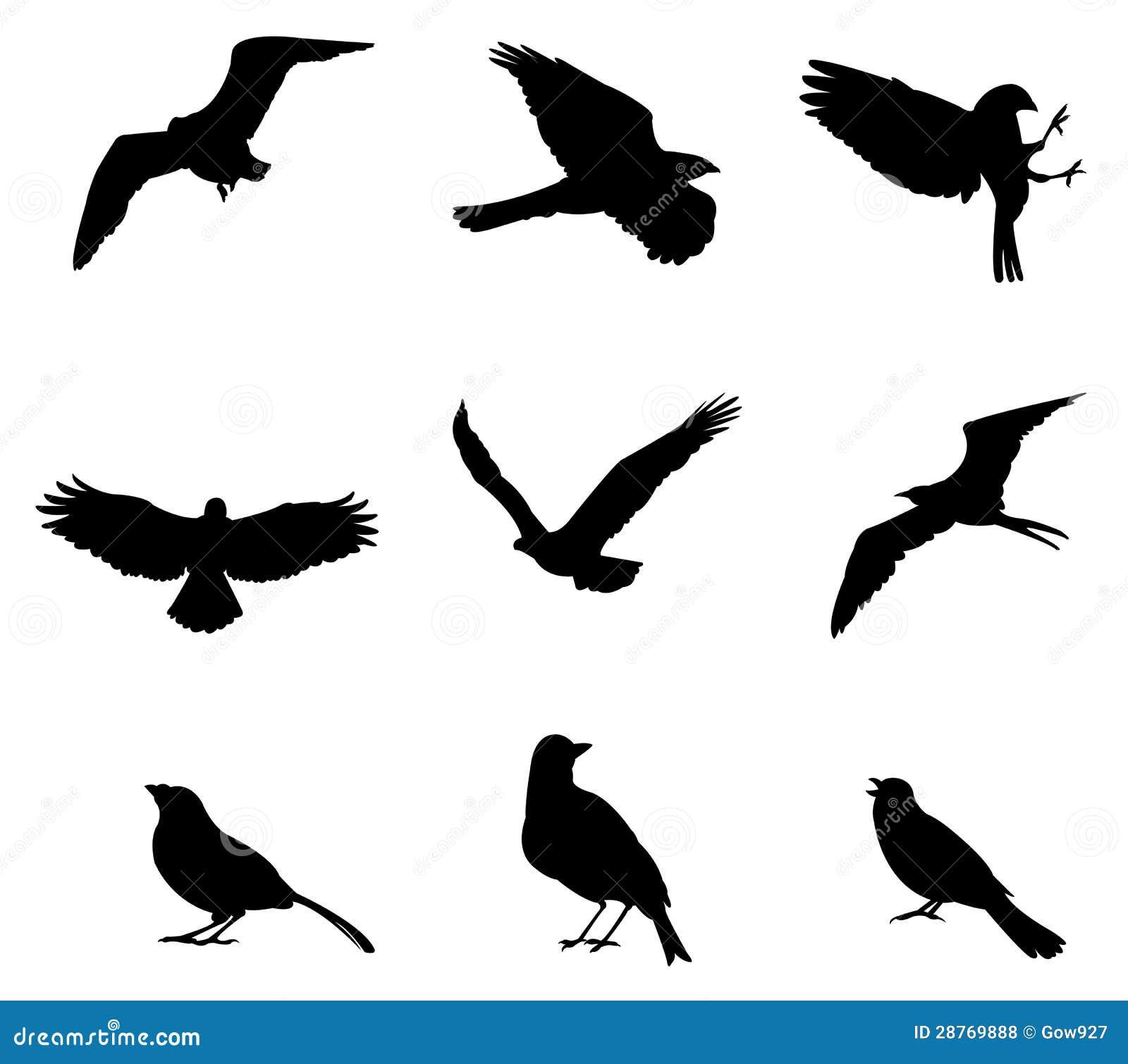 套剪影鸟,由向量创建