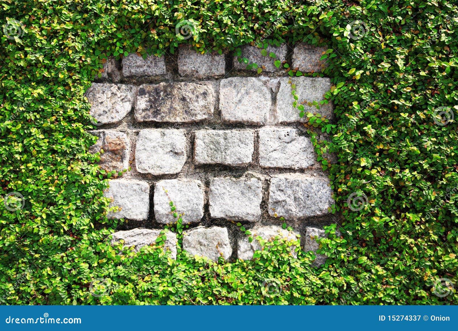 套期交易石墙