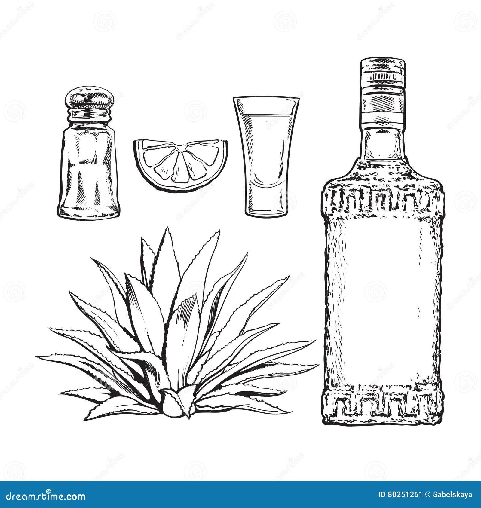 套龙舌兰酒瓶、射击、盐磨房、龙舌兰和石灰