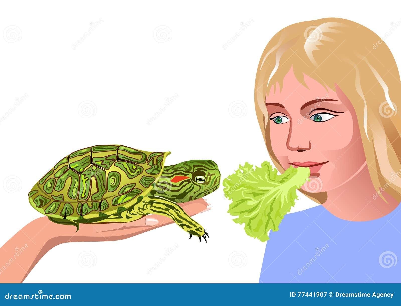 女孩和乌龟