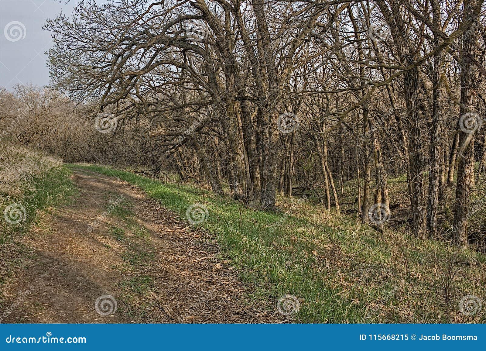 好地球国家公园是都市国家公园在苏族瀑布,南达科他地铁地区边缘