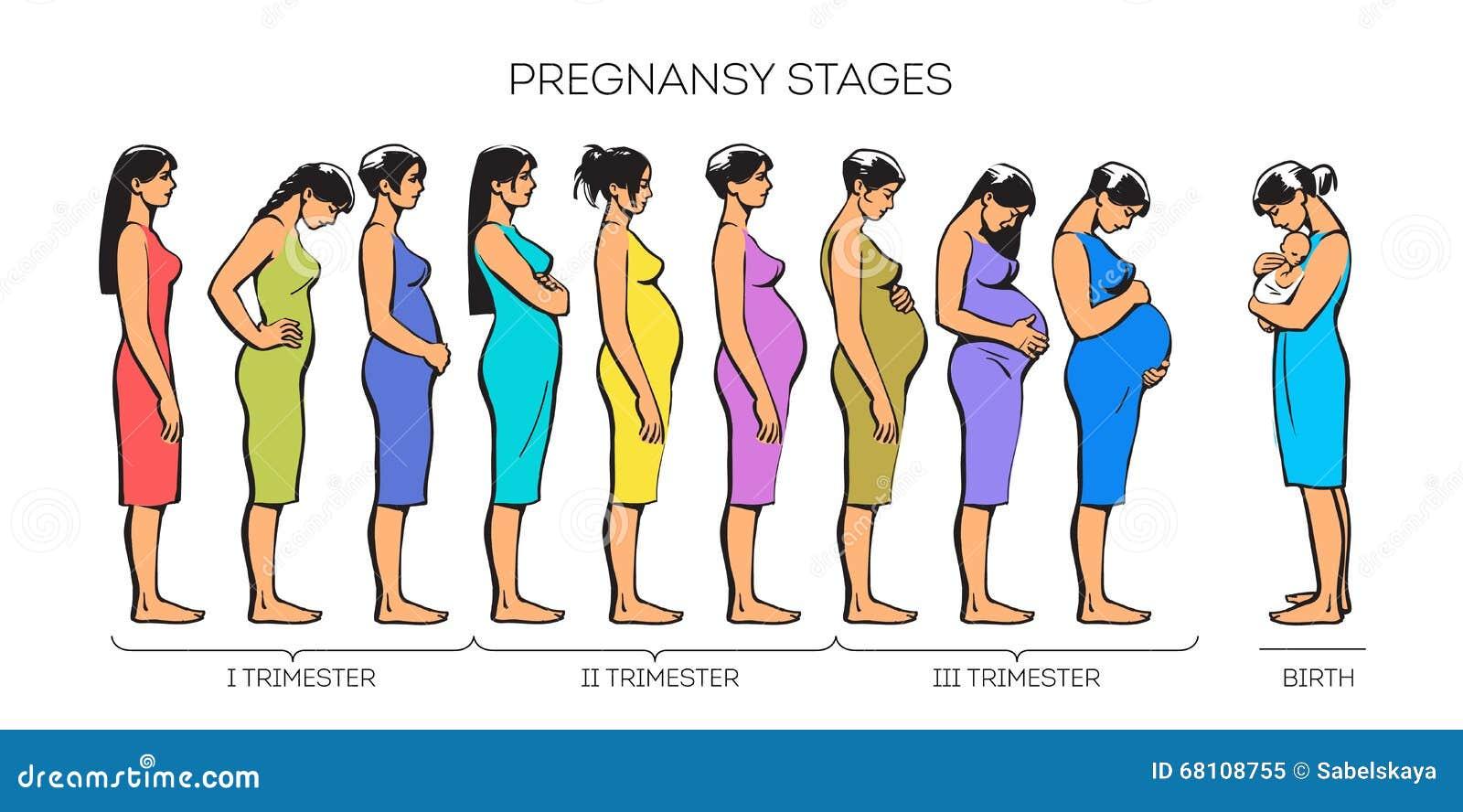 怀孕囹.:!��c`y.*��